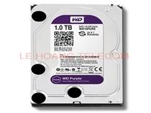 Ổ cứng HDD Western 1TB